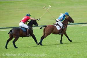 Crabs v Cav Polo-19
