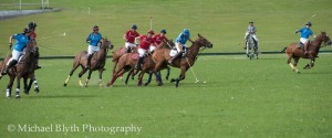 Crabs v Cav Polo-21